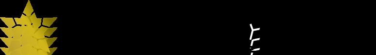 FIGHTINGSTAR